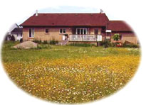 House with meadow
